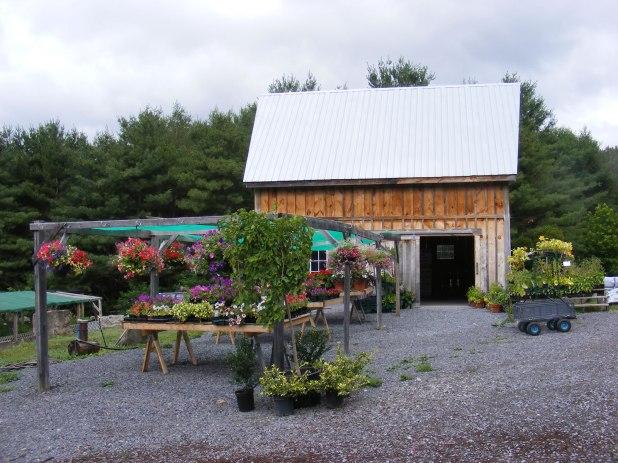 Carp Garden Centre