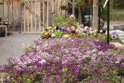 carp-garden-centre-ottawa_LDP_5445