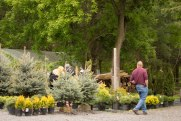 carp-garden-centre-ottawa_LDP_5670