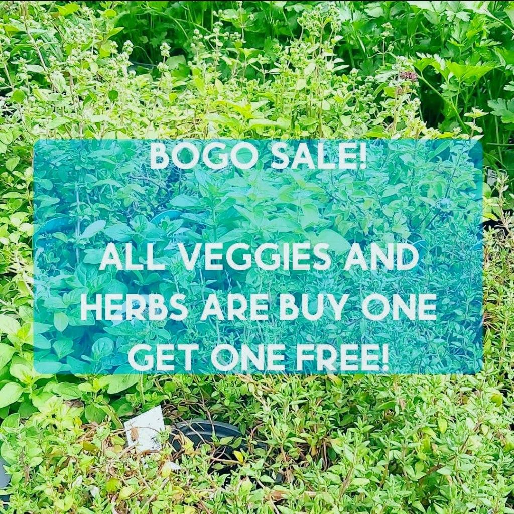 BOGO SALE! poster